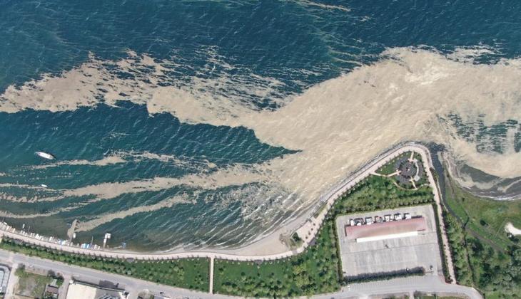 Balıkçıların korkulu rüyası Körfez'de sahilleri kapladı