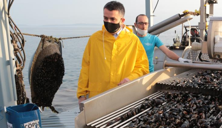Bekir Pakdemirli Marmara Denizi'nde midye hasat etti