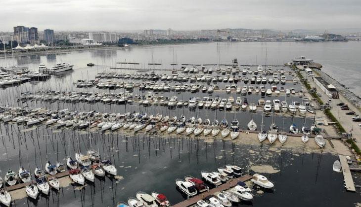 Deniz salyaları Pendik Marinayı da etkisi altına aldı