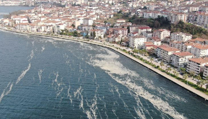 Deniz salyası İzmit Körfezi'ni beyaza bürüdü