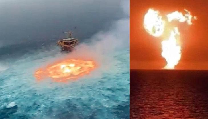 Denizler neden alev alev yanıyor: İşte bilimsel yanıtı