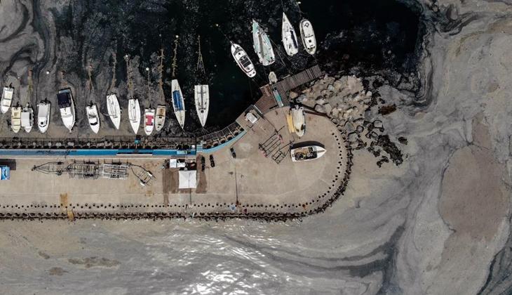 İstanbul'daki deniz salyası istilası devam ediyor