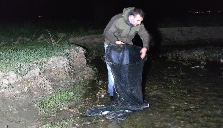 Kaçak avlanılan 200 kilo canlı balık tekrar suya bırakıldı