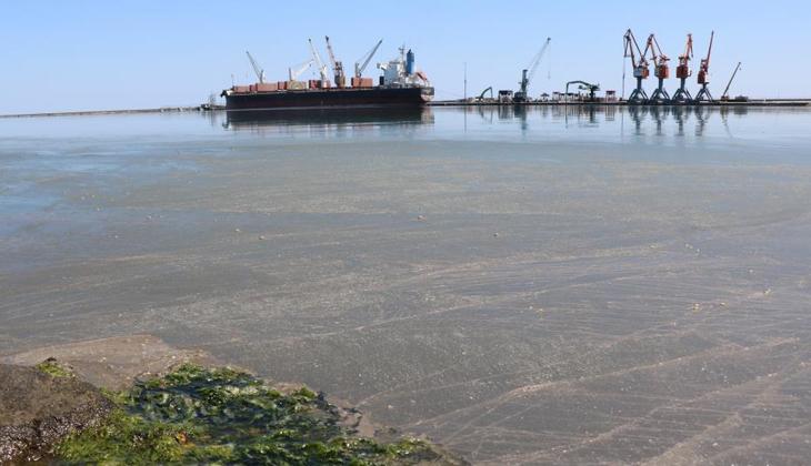 Karadeniz'deki korkutan kirlilik büyüyor