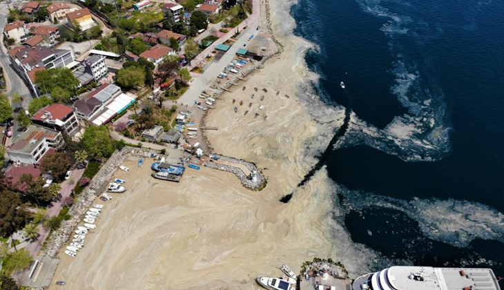 Kocaeli'de deniz salyasını arındırmak için temizlik çalışması yapılıyor