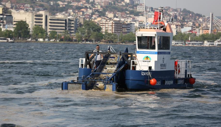 Körfez'de 38 günde 100 ton deniz salyası toplandı