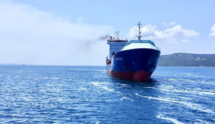 LİDER HALİL isimli konteyner gemisi, Çanakkale Boğazı'nda makine arızası yaşadı