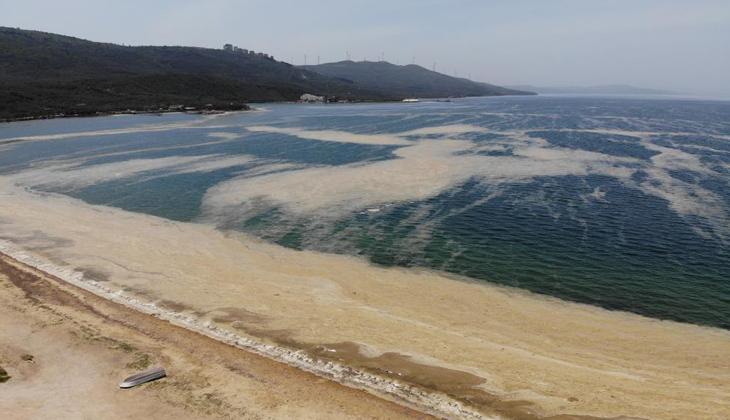 Marmara Denizi'nin yeni kabusu müsilaj, turizmi de olumsuz etkileyecek
