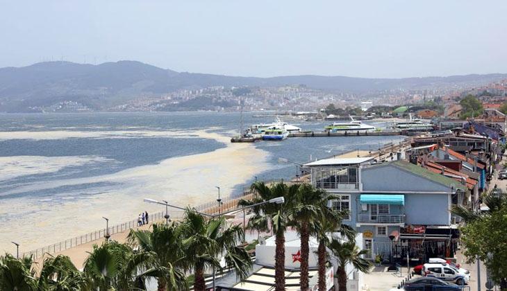 Marmara'da yayılımı süren deniz salyasına karşı ortak mücadele başlatıyor