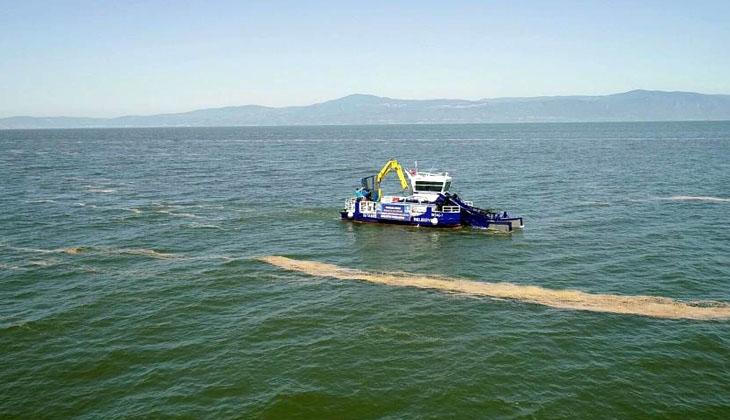 Mudanya'da deniz salyası temizliği başladı