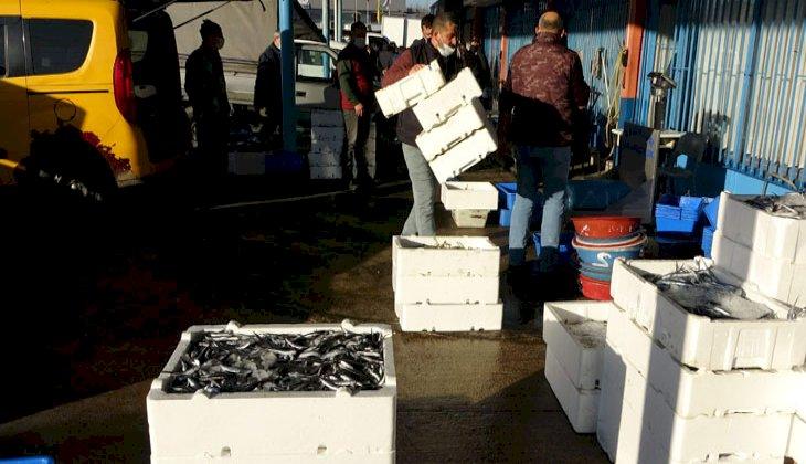 Trabzon Toptancı Balık Hali'ne gelen balık miktarındaki düşüş devam ediyor