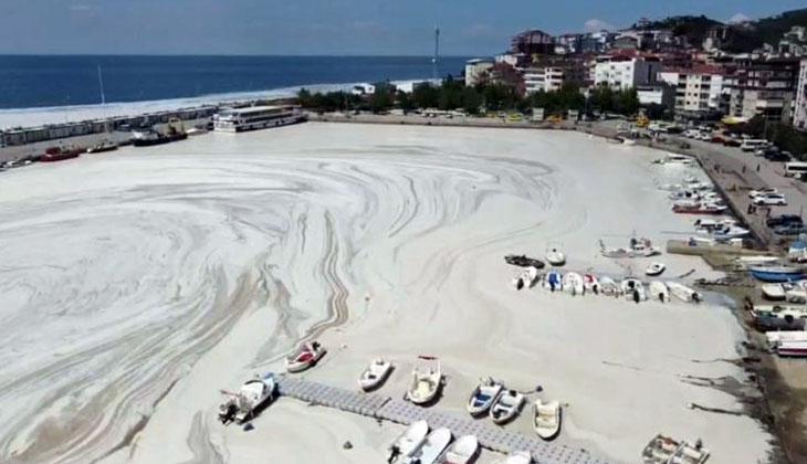 Marmara Denizi'nde deniz salyası: Asıl korkumuz buzdağının görünmeyen, denizin altındaki kısmı...